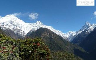 Nepal_day12_012