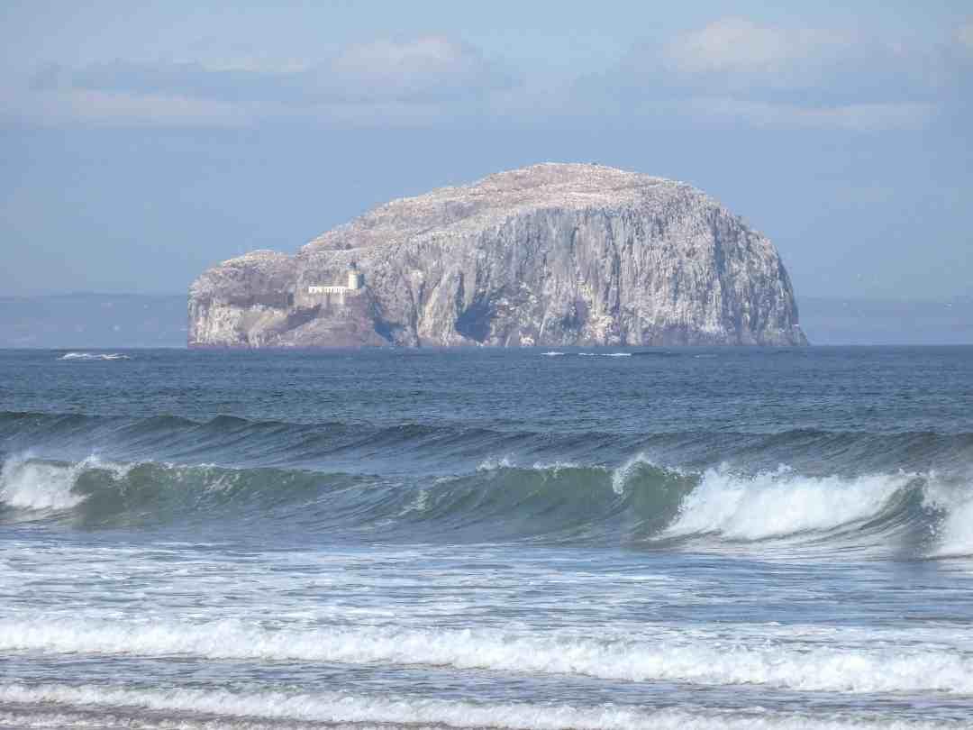 Bass Rock Tyninghame