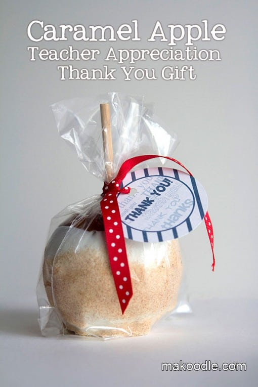 Teacher Appreciation Ideas Over 30 Teacher Gift Ideas