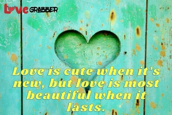 Love is cute when its new but love is most beautiful when it lasts.