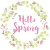 Hello Spring - wedding invitations