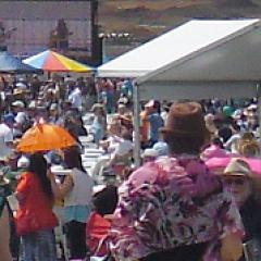 wellcamp crowd