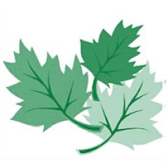 leafmore logo