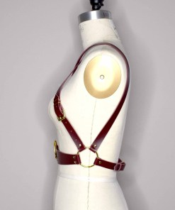 convertible body harness