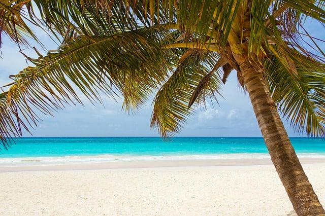 beach-84631_640