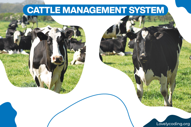 Cattle Management System