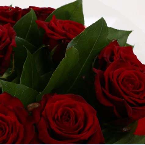 12 Red Roses Bouquet FREE DELIVERY Clear Savings Clear