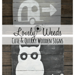 Cute and Quirky Little Signs, www.lovelyweeds.com
