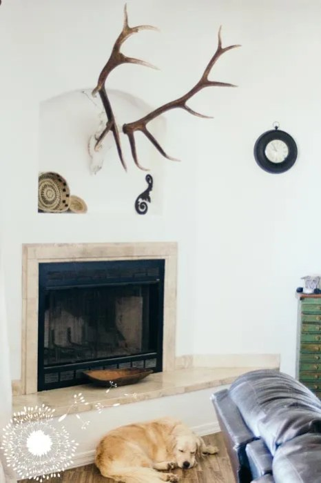Elk over the fireplace {www.lovelyweeds.com}