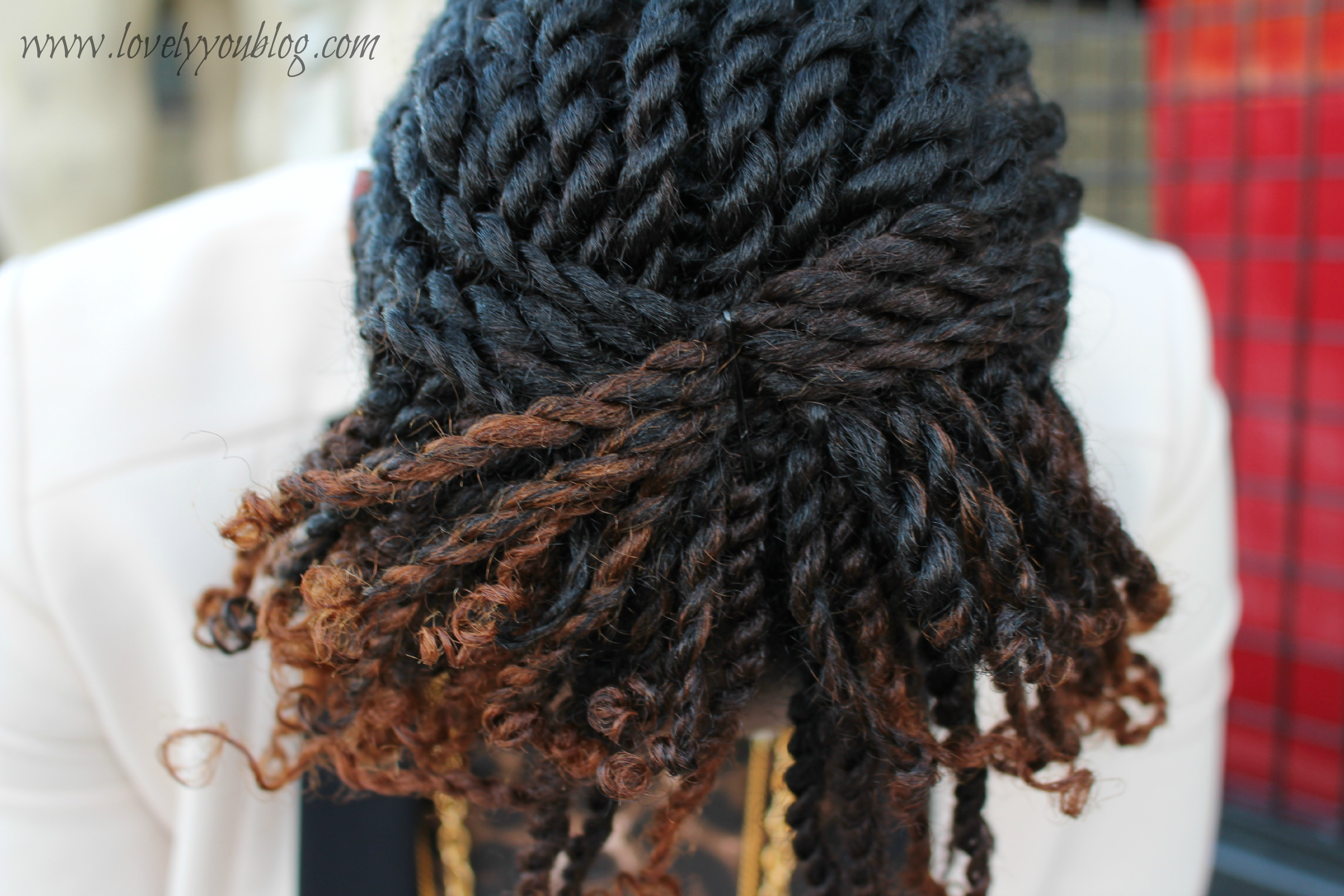 Natural Hair Braid Updo With Twists Lunch Date