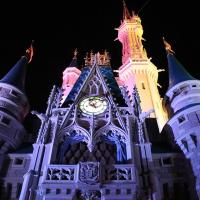 7 Packing Must-Haves for Walt Disney World