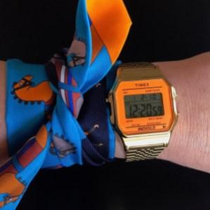 Hermes Twilly Scarf - $170 USD - hermes.com Timex Unisex TW2P65100 Watch - $34.95 USD - amazon.com