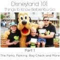 Disneyland 101 Parking, Security, Tickets