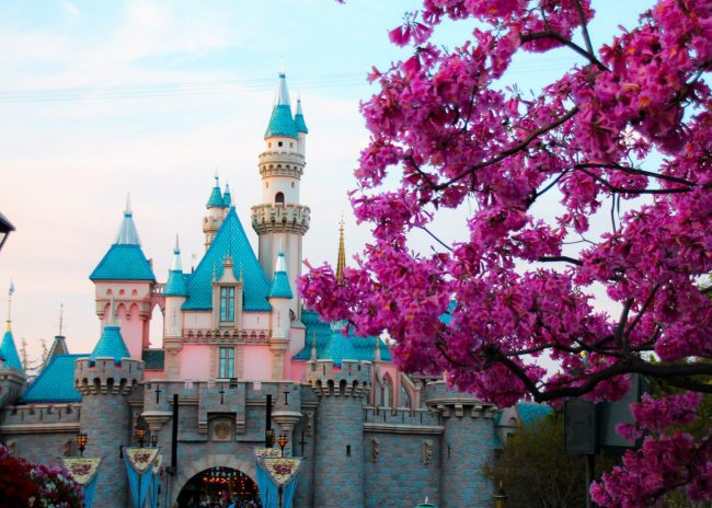 Sprintime at Disneyland Sleeping Beauty Castle