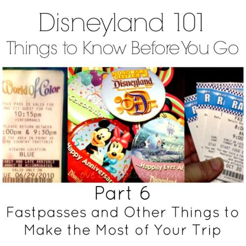 Disneyland 101 Part 6