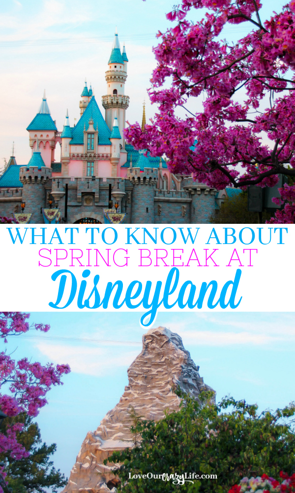 Heading to Disneyland for Spring Break? We have everything you need to know before heading to Southern California for vacation. Disney travel tips for spring. #Disneyland #Disney #Spring