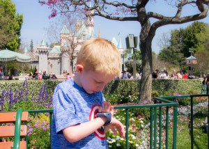 My Child Got Lost In Disney… It Can Happen To You