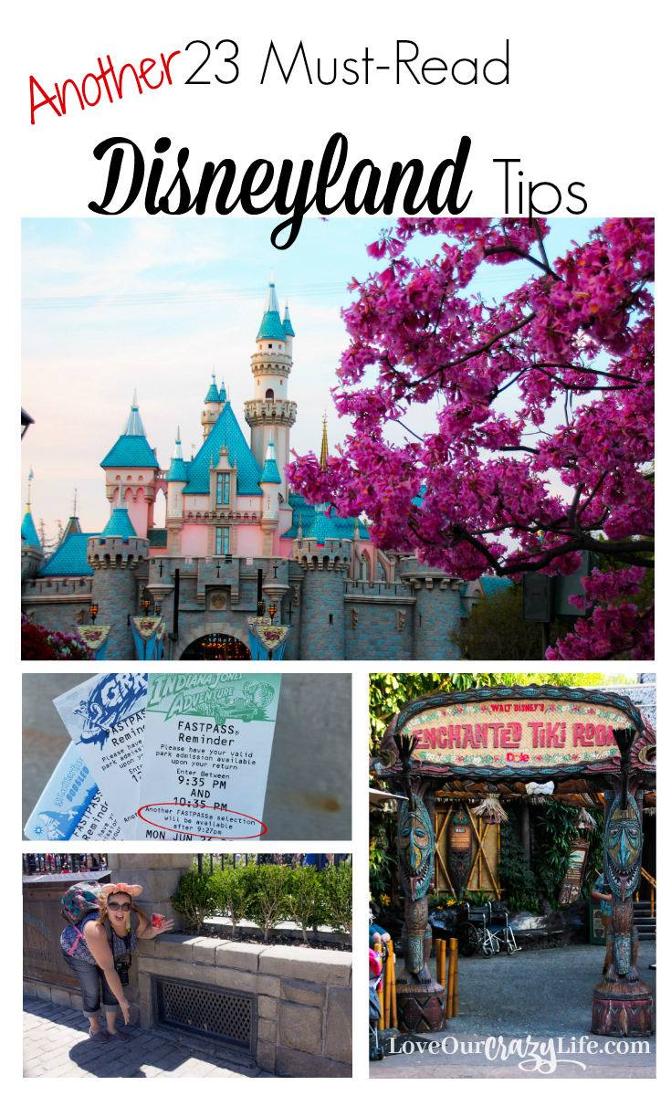 These are awesome tips for any Disneyland Vacation. Not just for first timers. And the article contains links to two other lists of tips type articles.  Disneyland | Disney | Travel | Vacation | Travel Tips | Disney California Adventure | Theme Parks