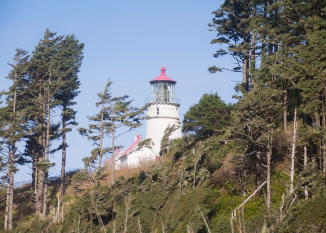 Heceta head lighthouse about an hour south of Newport, Oregon