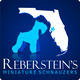 Reberstein's Miniature Schnauzers Logo