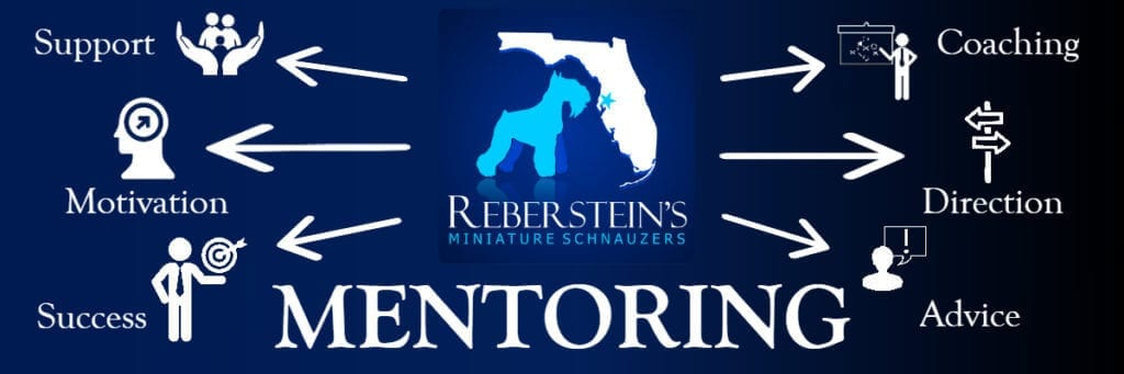 Reberstein's Mentoring Logo