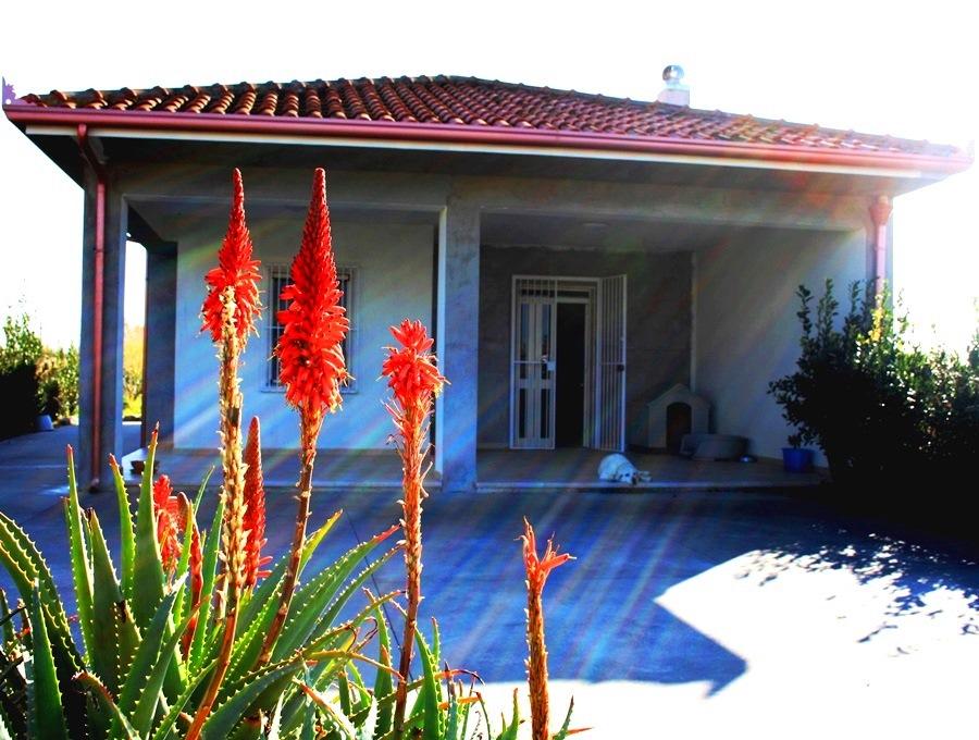 Villa Love Sicily 14