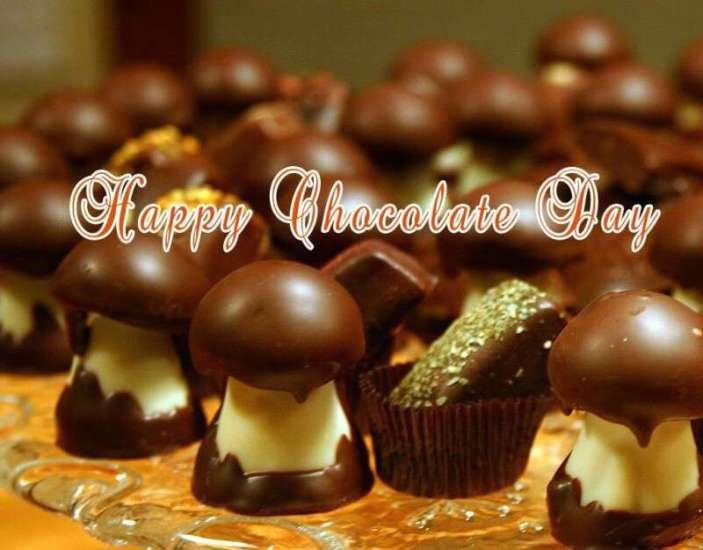 happy chocolate day wishes, happy chocolate day greetings, chocolate day celebration, chocolate quotes, Happy Chocolate Day 2019 Status Shayari, Chocolate Images Hindi Wishes sweet-valentines-day-chocolate-msg-in-hindi-lovesove