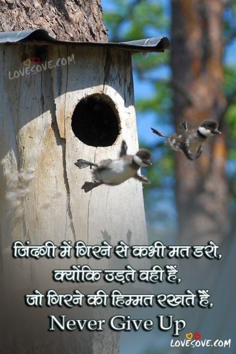 Life status for whatsapp in hindi, zindagi status in hindi, life happy status hindi, life status for whatsapp in hindi, heart touching status in hindi true life status, status for whatsapp about life in hindi, Life Status In Hindi
