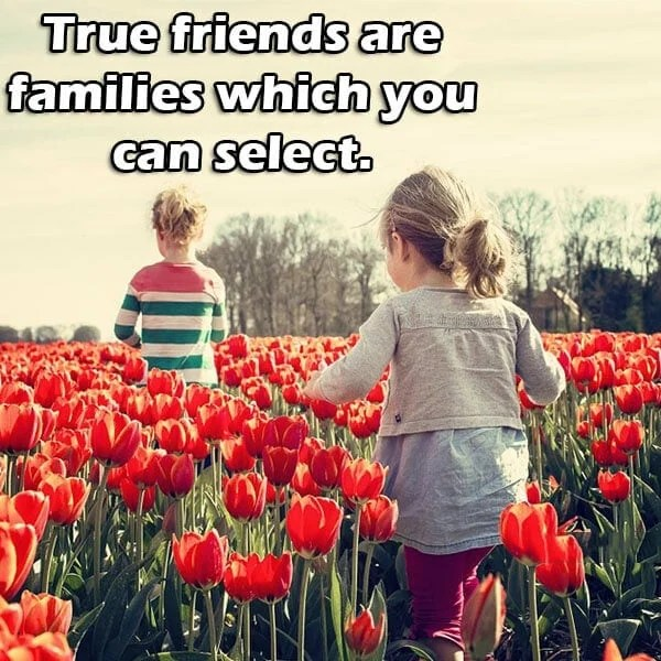friends forever status in english, touching friendship lines in english