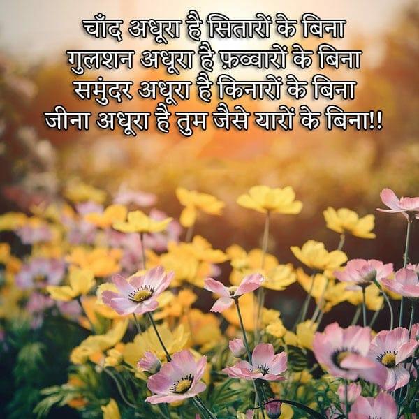 dosti shayari in hindi language, shayari hindi dosti, dosti shayari status in hindi