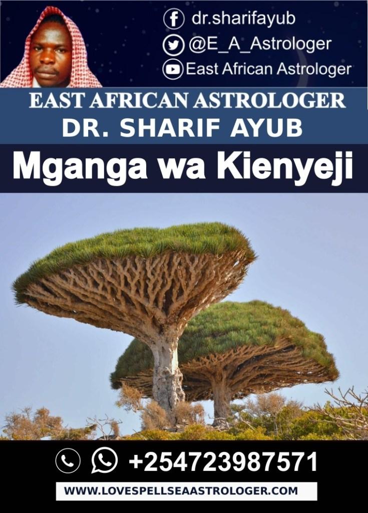 Mganga-Daktari wa Kienyeji