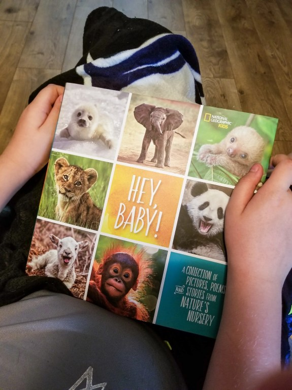National Geographic Kids HEY, BABY! Book