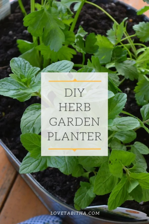 Do it yourself herb garden planter, cost me under $15 to make mine.