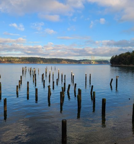 Over 150 Family Friendly Things To Do In Pierce County