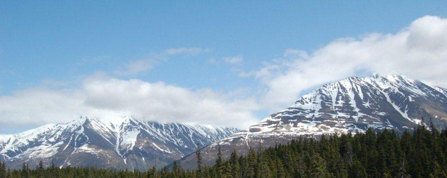 Hiking Alaska for the Plants