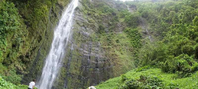 Pipiwai Trail & Waimoku Falls in Hawaii
