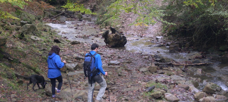Hiking, water, water filters, purifiers, filter, backpacking