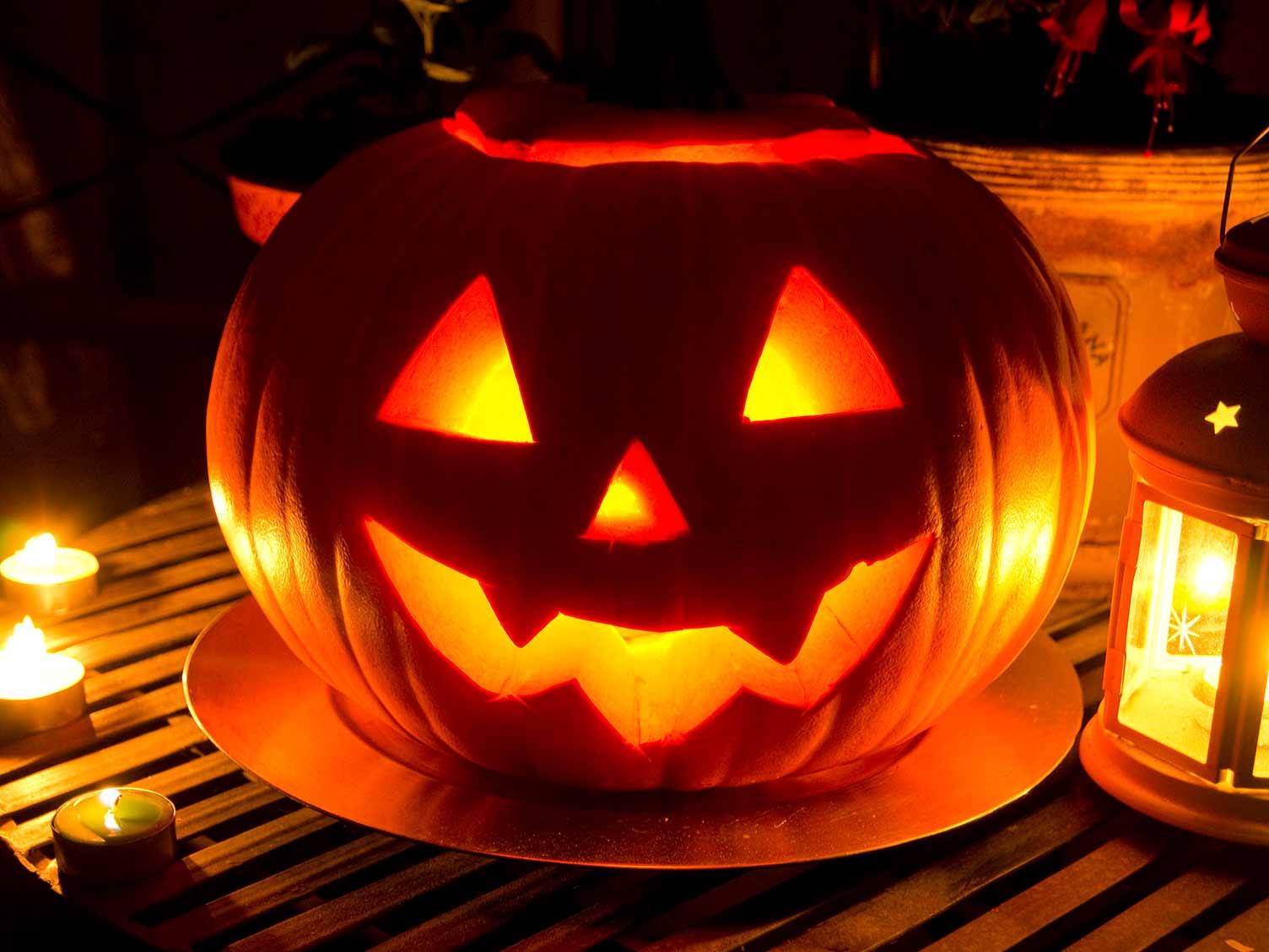 How To Grow Pumpkins For Halloween