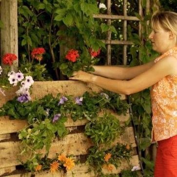 jardin de palettes la pause jardin