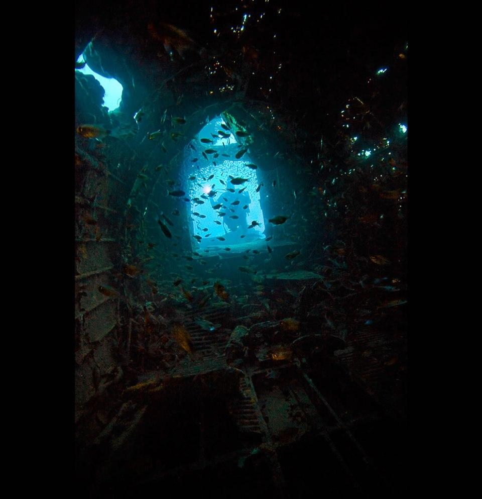 Inside the Betty Mitsubishi Attack bomber. Truk lagoon - 20m deep