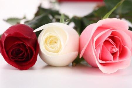 Beautiful flowers 2019 white flower symbolism beautiful flowers beautiful flowers white flower symbolism mightylinksfo