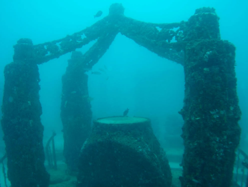 Neptune Memorial Reef where oldest living scuba diver in the Guinness World Records is interred