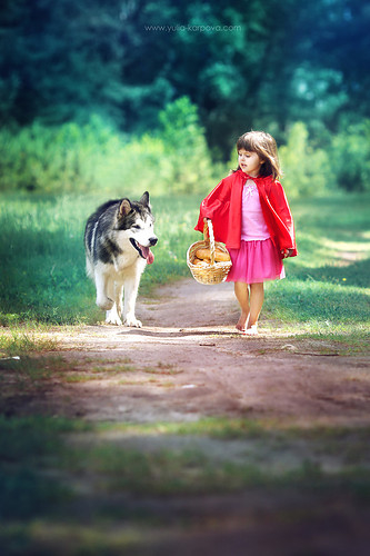 Little Red Riding Hood Pictures Photos And Images For