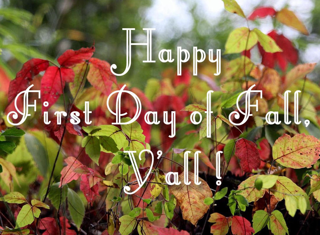 Image result for first day of fall quotes