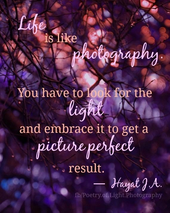 Life Is Like Photography Pictures, Photos, and Images for ...