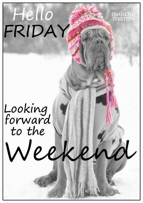 Hello Friday Looking Forward To The Weekend Pictures