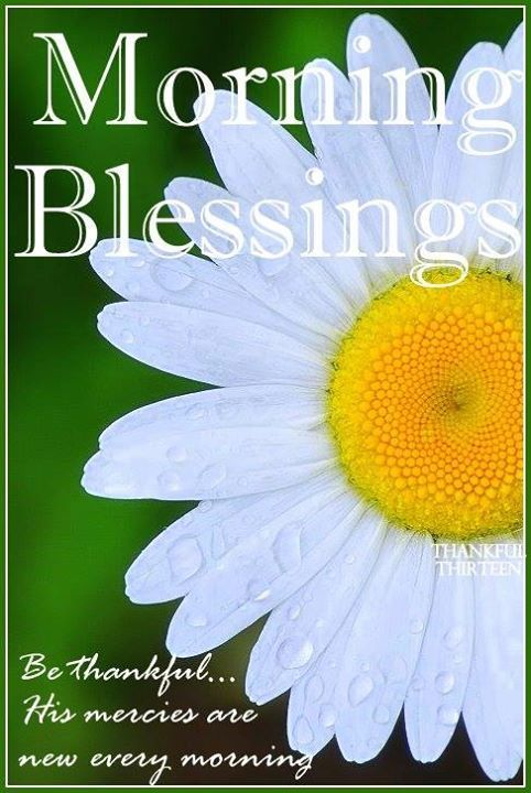 Morning Blessings Be Thanful Pictures Photos And Images