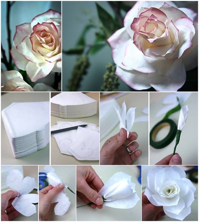 DIY Flowers From Coffee Filters Pictures Photos And