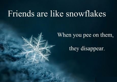 Friends Are Like Snowflakes Pictures Photos And Images