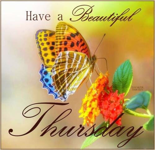 Have A Beautiful Thursday Pictures Photos And Images For